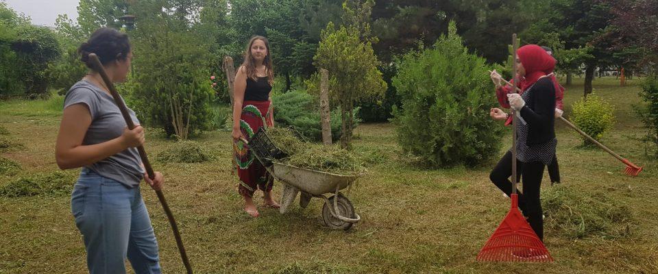 2019'un İlk Gönüllülerini Düzce'de Konuk Ediyoruz